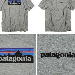 Patagonia logo t shirt grey